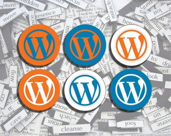 pin's WordPress