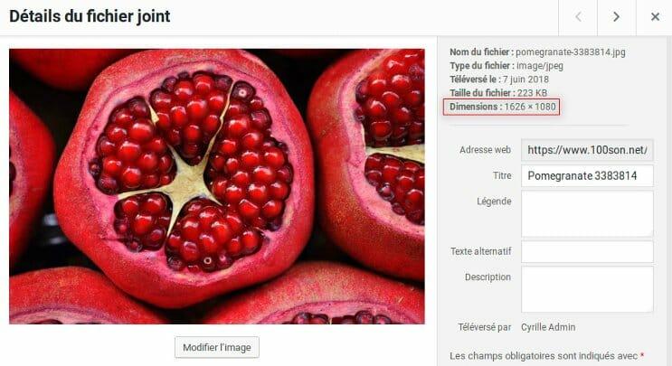 Capture d'écran: taille image otpimisée par EWWW Image Optimizer