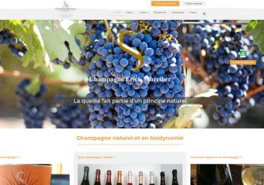 Capture Nouveau Site Champagne Schreiber.fr 2018