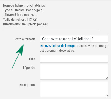 Capture de WordPress 5.2 : zone de saisie du texte alternatif.