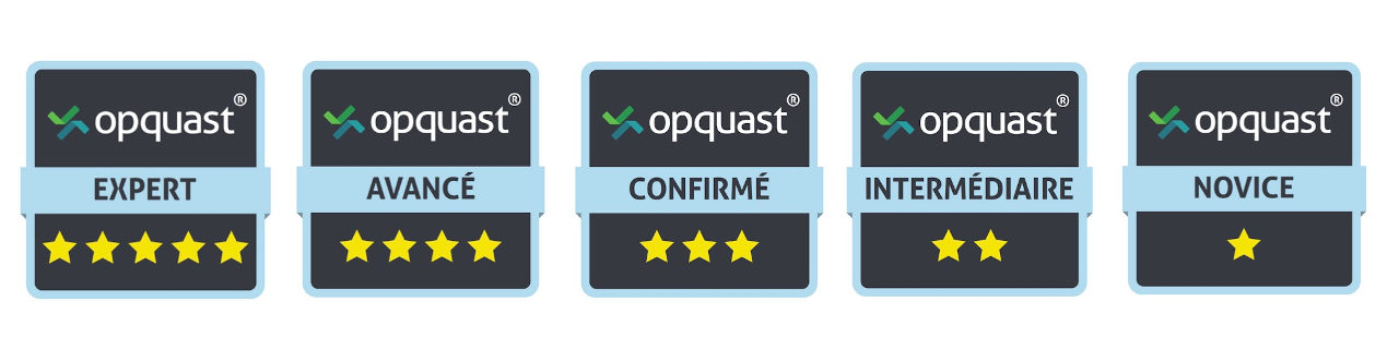 5 badges Opquast : expert, avancé, confirmé, intermédiaire, novice.