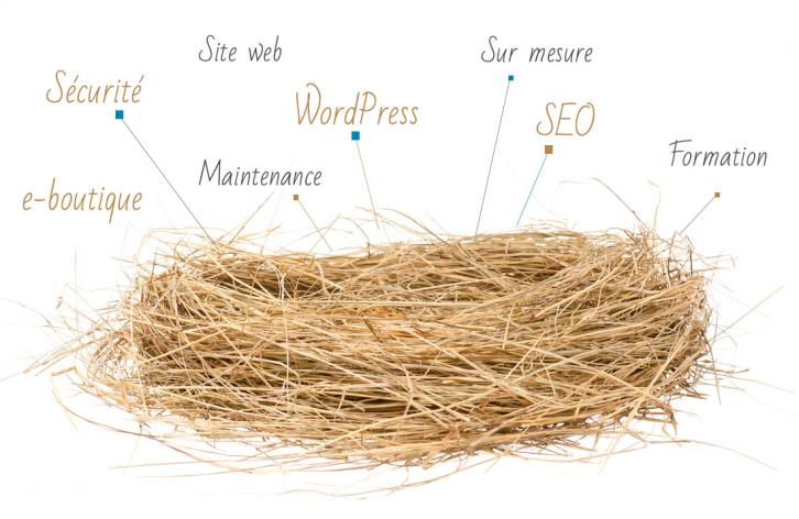 Nid WordPress